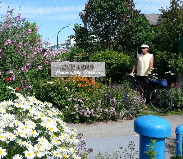 WAyne+and+Bike+sidewalk+garden+2013